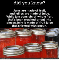 Memes, The More You Know, and 🤖: did you know?  Jams are made of fruit,  and jellies are made of juice.  While jam consists of whole fruit  that's been crushed or cut into  pieces, jelly is made of fruit juice  that's firmed with pectin.  PHOTO: DIFFEN The more you know 💫 jams jelly food interesting random ➡📱Download our free App: [LINK IN BIO]