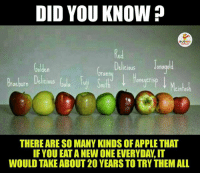 Apple, Appl, and Indianpeoplefacebook: DID YOU KNOW  Jonagold  Delicious  Golden  Grann  Braubern Delicious  THERE ARE SO MANY KINDS OFAPPLETHAT  IF YOU EATA NEW ONE EVERYDAW, IT  WOULD TAKE ABOUT 20 YEARS TO TRY THEMALL Fact About Apples.. ;)