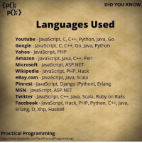 Django, eBay, and Memes: DID YOU KNOW  Languages Used  Youtube JavaScript, C, C++, Python, Java, Go  Google JavaScript, C, C++, Go, Java, Python  Yahoo JavaScript, PHP  Amazon JavaScript, Java, C++, Perl  Microsoft JavaScript, ASP.NET  Wikipedia JavaScript, PHP, Hack  eBay.com  JavaScript, Java, Scala  Pinrest JavaScript, Django (Python), Erlang  MSN JavaScript, ASP  Twitter JavaScript, C++, Java, Scala, Ruby on Rails  Facebook JavaScript, Hack, PHP, Python, C++, Java,  Erlang, D, Xhp, Haskell  Practical Programming  https://www.facebook.com/YourPracticalProgramming/
