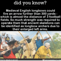 Memes, Archer, and Medieval: did you know?  Medieval English longbows could  fire an arrow further than 300 yards  which is almost the distance of 3 football  fields. So much strength was required to  operate them that ancient skeletons can  be identified as longbow archers due to  their enlarged left arms.  DIDYouKNowFACTs.coM  PHOTO: REALM OF HISTORY So crazy! ⚔️ bowandarrow history strength wow ➡📱Download our free App: [LINK IN BIO]