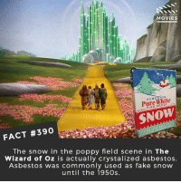 Fake, Fire, and Memes: DID YOU KNOW  MOVIES  ASBESTOS  Pure White  FIRE PROOF  SNOW  FACT #390  LOOKS LIKE REAL SNOW  The snow in the poppy field scene in The  Wizard of Oz is actually crystalized asbestos.  Asbestos was commonly used as fake snow  until the 195Os. What movie do you wish you saw when it came out in the cinema for the first time? I think watching The Wizard of Oz would have been amazing! 🎥 • • • • Double Tap and Tag someone who needs to know this 👇 All credit to the respective film and producers. movie movies film tv camera cinema fact didyouknow moviefacts cinematography screenplay director actor actress act acting movienight cinemas watchingmovies hollywood bollywood didyouknowmovies