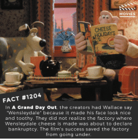 "Memes, Movies, and Netflix: DID YOU KNOW  MOVIES  ce  CHEESE  OLIDAYS  0  FACT #1204  In A Grand Day Out, the creators had Wallace say  ""Wensleydale"" because it made his face look nice  and toothy. They did not realize the factory where  Wensleydale cheese is made was about to declare  bankruptcy. The film's success saved the factory  from going under. ❤️👍📽️🎬 • • • • Double Tap and Tag someone who needs to know this 👇 All credit to the respective film and producers. Movie Movies Film TV Cinema MovieNight Hollywood Netflix wallaceandgromit wallace gromit agranddayout claymation"
