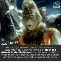 Christmas, The Grinch, and How the Grinch Stole Christmas: DID YOU KNOW  MOVIES  FACT #1189  Jim Carrey's yellow contact lenses were so  uncomfortable during filming of How the  Grinch Stole Christmas that he wasn't able to  wear them at times during filming. Some shots  of his eyes were colored in post-production. 📽️🎬 • • • • Double Tap and Tag someone who needs to know this 👇 All credit to the respective film and producers. Movie Movies Film TV Cinema MovieNight Hollywood Netflix grinch jimcarrey christmas thegrinchwhostolechristmas