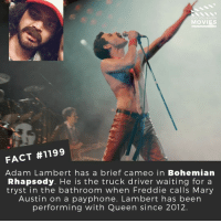 Did you spot him?📽️🎬 • • • • Double Tap and Tag someone who needs to know this 👇 All credit to the respective film and producers. Movie Movies Film TV Cinema MovieNight Hollywood Netflix adamlambert queen bohiemianrhapsody freddiemercury: DID YOU KNow  MOVIES  FACT #1199  Adam Lambert has a brief cameo in Bohemian  Rhapsody. He is the truck driver waiting for a  tryst in the bathroom when Freddie calls Mary  Austin on a payphone. Lambert has been  performing with Queen since 2012. Did you spot him?📽️🎬 • • • • Double Tap and Tag someone who needs to know this 👇 All credit to the respective film and producers. Movie Movies Film TV Cinema MovieNight Hollywood Netflix adamlambert queen bohiemianrhapsody freddiemercury