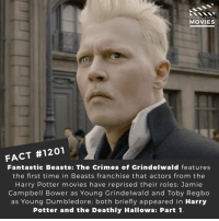 Do you think Harry Potter should ever get remade?📽️🎬 • • • • Double Tap and Tag someone who needs to know this 👇 All credit to the respective film and producers. Movie Movies Film TV Cinema MovieNight Hollywood Netflix fantasticbeasts crimesofgrindelwald johnnydepp harrypotter: DID YOU KNOW  MOVIES  FACT #1201  Fantastic Beasts: The Crimes of Grindelwald features  the first time in Beasts franchise that actors from the  Harry Potter movies have reprised their roles: Jamie  Campbell Bower as Young Grindelwald and Toby Regbo  as Young Dumbledore; both briefly appeared in Harry  Potter and the Deathly Hallows: Part1 Do you think Harry Potter should ever get remade?📽️🎬 • • • • Double Tap and Tag someone who needs to know this 👇 All credit to the respective film and producers. Movie Movies Film TV Cinema MovieNight Hollywood Netflix fantasticbeasts crimesofgrindelwald johnnydepp harrypotter