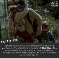 Memes, Movies, and Netflix: DID YOU KNOW  MOVIES  FACT #1225  Sandra Bullock was blindfolded for about fifty  percent of the shooting schedule of Bird Box. She  was so dedicated to the role, that she refused  director Susanne Bier's request to use a blindfold  with holes cut in. 📽️🎬 • • • • Double Tap and Tag someone who needs to know this 👇 All credit to the respective film and producers. Movie Movies Film TV Cinema MovieNight Hollywood Netflix birdbox sandrabullock blindfold