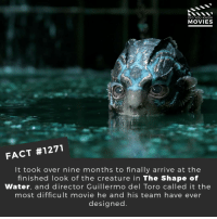 What movie has the best visuals?📽️🎬 • • • • Double Tap and Tag someone who needs to know this 👇 All credit to the respective film and producers. Movie Movies Film TV Cinema MovieNight Hollywood Netflix shapeofwater theshapeofwater GuillermodelToro sallyhawkins: DID YOU KNOW  MOVIES  FACT #1271  It took over nine months to finally arrive at the  finished look of the creature in The Shape of  Water, and director Guillermo del Toro called it the  most difficult movie he and his team have ever  designed What movie has the best visuals?📽️🎬 • • • • Double Tap and Tag someone who needs to know this 👇 All credit to the respective film and producers. Movie Movies Film TV Cinema MovieNight Hollywood Netflix shapeofwater theshapeofwater GuillermodelToro sallyhawkins