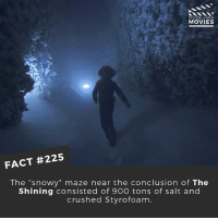 """Memes, Movies, and The Shining: DID YOU KNOW  MOVIES  FACT #225  The """"snowy"""" maze near the conclusion of The  Shining consisted of 900 tons of salt and  crushed Styrofoam. Would you ever want to see a remake of the Shining? (Similar to It) 🎥 . . . . All credit to the respective film and producers. movie movies film tv camera cinema fact didyouknow moviefacts cinematography screenplay director actor actress act acting movienight cinemas watchingmovies hollywood bollywood didyouknowmovies"""