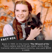 """Cute, Disney, and Memes: DID YOU KNOW  MOVIES  FACT #24  Back in 1939, in the movie """"The Wizard of Oz,""""  Toto's salary was $125 per week, while Judy  Garland, who portrayed Dorothy, was paid $500  a week. 😂 it's a pretty cute dog though ------------ All credit to the respective film and producers. movie movies film tv marvel dc starwars jurassicpark camera cinema fact didyouknow didyouknowmovies pixar disney"""