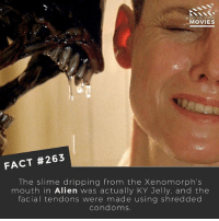 I Bet, Memes, and Movies: DID YOU KNOW  MOVIES  FACT #263  The slime dripping from the Xenomorph's  mouth in Alien was actually KY Jelly, and the  facial tendons were made using shredded  condoms Haha eww! I bet Sigourney Weaver was pretty grossed out by this! What's the grossest movie effect you guys know about? 🎥 . . . . Double Tap and Tag someone who needs to know this 👇 All credit to the respective film and producers. movie movies film tv camera cinema fact didyouknow moviefacts cinematography screenplay director actor actress act acting movienight cinemas watchingmovies hollywood bollywood didyouknowmovies