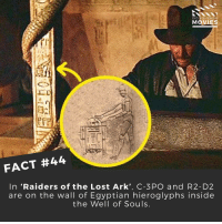 "Disney, Memes, and Pixar: DID YOU KNOW  MOVIES  FACT #44  In ""Raiders of the Lost Ark', C-3 PO and R2- D2  are on the wall of Egyptian hieroglyphs inside  the Well of Souls How awesome is that?! ------------ All credit to the respective film and producers. movie movies film tv marvel dc starwars jurassicpark camera cinema fact didyouknow didyouknowmovies pixar disney bigfish moviefacts"
