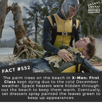 Memes, Movies, and Netflix: DID YOU KNOW  MOVIES  FACT #552  The palm trees on the beach in X-Men: First  Class kept dying due to the cold December  weather. Space heaters were hidden through  out the beach to keep them warm. Eventually,  set dressers spray painted the leaves green to  keep up appearances If you could be any mutant from the X-Men movies, who would you be? 🎥 • • • • Double Tap and Tag someone who needs to know this 👇 All credit to the respective film and producers. movie movies film tv camera cinema fact didyouknow moviefacts cinematography screenplay director actor actress act acting movienight hollywood netflix didyouknowmovies riverdale