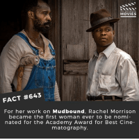 What is the most beautiful looking film you've ever seen? 🎥 • • • • Double Tap and Tag someone who needs to know this 👇 All credit to the respective film and producers. movie movies film tv cinema fact didyouknow moviefacts cinematography screenplay director movienight hollywood netflix didyouknowmovies mudbound timesup metoo biglittlelies 35mm academyawards2018 history maryjblige ww2: DID YOU KNOW  MOVIES  FACT #643  For her work on Mudbound, Rachel Morrisorn  became the first woman ever to be nomi  nated for the Academy Award for Best Cine  matography. What is the most beautiful looking film you've ever seen? 🎥 • • • • Double Tap and Tag someone who needs to know this 👇 All credit to the respective film and producers. movie movies film tv cinema fact didyouknow moviefacts cinematography screenplay director movienight hollywood netflix didyouknowmovies mudbound timesup metoo biglittlelies 35mm academyawards2018 history maryjblige ww2