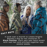 Memes, Movies, and Netflix: DID YOU KNOW  MOVIES  FACT #675  It took over a month to create Angela  Bassett's wig for her character in  Black Panther. Each part was hand woven  with real hair and stitched together over  several weeks. What did you think of Black Panther? 🎥 • • • • Double Tap and Tag someone who needs to know this 👇 All credit to the respective film and producers. movie movies film tv cinema fact didyouknow moviefacts cinematography screenplay director movienight shrooms hollywood netflix didyouknowmovies academyawards blackpanther tchalla wakanda mcu marvel vibranium
