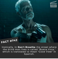 "Memes, Movies, and Netflix: DID YOU KNOw  MOVIES  FACT #742  Ironically. in Don't Breathe the street where  the blind man lives is called ""Buena Vista,""  which is translated to mean ""Good View"" in  Spanish. If you had to choose would you be deaf or blind? 🎥 • • • • Double Tap and Tag someone who needs to know this 👇 All credit to the respective film and producers. movie movies film tv cinema fact didyouknow moviefacts cinematography screenplay director movienight hollywood netflix didyouknowmovies academyawards deaf blind gun"