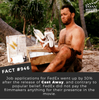 Birthday, Memes, and Movies: DID YOU KNOW  MOVIES  FACT #946  Job applications for FedEx went up by 30%  after the release of Cast Away, and contrary to  popular belief, FedEx did not pay the  filmmakers anything for their presence in the  movie Happy 62nd Birthday Tom Hanks! 🎬📽️ • • • • Double Tap and Tag someone who needs to know this 👇 All credit to the respective film and producers. Movie Movies Film TV Cinema MovieNight Hollywood Netflix tomhanks castaway forrestgump toystory Big