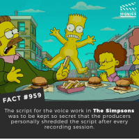 Do you want to see another Simpsons movie? 🎬🎥 • • • • Double Tap and Tag someone who needs to know this 👇 All credit to the respective film and producers. Movie Movies Film TV Cinema MovieNight Hollywood Netflix simpsons thesimpsons homersimpson bartsimpson maggiesimpson lisasimpson krustytheclown doh lisasimpson margesimpson: DID YOU KNOW  MOVIES  FACT #959  The script for the voice work in The Simpsons  was to be kept so secret that the producers  personally shredded the script after every  recording session. Do you want to see another Simpsons movie? 🎬🎥 • • • • Double Tap and Tag someone who needs to know this 👇 All credit to the respective film and producers. Movie Movies Film TV Cinema MovieNight Hollywood Netflix simpsons thesimpsons homersimpson bartsimpson maggiesimpson lisasimpson krustytheclown doh lisasimpson margesimpson