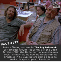 "Dude, Memes, and Movies: DID YOU KNOW  MOVIES  FACT #979  Before filming a scene in The Big Lebowski  Jeff Bridges would frequently ask the Coen  Brothers ""Did the Dude burn one on the way  over?"" If they said he had, he would rub his  knuckles in his eyes before doing a take to  make his eyes appear bloodshot. Would you watch a spin-off of The Big Lebowski?🎬🎥 • • • • Double Tap and Tag someone who needs to know this 👇 All credit to the respective film and producers. Movie Movies Film TV Cinema MovieNight Hollywood jeffbridges juliannemoore thebiglebowski cohenbrothers biglebowski"