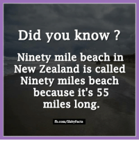 nineties: Did you know?  Ninety mile beach in  New Zealand is called  Ninety miles beach  because it's 55  miles long.  fb.com/ShityFacts