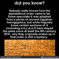 Dank, Alphabet, and Blog: did you know?  Nobody really knows how the  alphabetical  order came to be  Some speculate it was adapted  from a series of ancient Egyptian  hieroglyphics, but while linguists  know certain sections of it  (including a,b,c,d,e,f) have stayed  the same since at least the 8th century  BCE, why they originally ended up in  that order is still a mystery  DIDYouK Now BLOG coM  PHOTO: ANDREA-HIEROGLYPHS Will we ever know?! 🤔  FYI, we post different content on Instagram, follow us here: http://instagram.com/didyouknowblog ☚