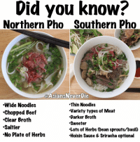 "Beef, Beef, and Memes: Did you know?  Northern Pho Southern Pho  @AsiansNever Die  Thin Noodles  Wide Noodles  Variety types of Meat  ""Chopped Beef  Darker Broth  Clear Broth  Sweeter  Saltier  Lots of Herbs (bean sprouts/basil)  No plate of Herbs  Hoisin Sauce & Sriracha optional Did you know there are different varieties of Vietnamese Pho? Either way they are both hella good!! I need me a bowl... 😂 photos by @theblogofsalt follow her for more Vietnamese dishes 😂😂 pho vietnamesefood asianparents struggles extra beingextra asianparents growingupasian asianproblems asianinme saltbae lit epic thirsty asiansneverdie aznneverdie Asianguy asiangirl asianbabes asianbabe comedy lol iger asianmemes memes meme"