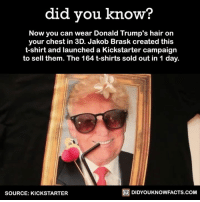 Dank, Donald Trump, and Facts: did you know?  Now you can wear Donald Trump's hair on  your chest in 3D. Jakob Brask created this  t-shirt and launched a Kickstarter campaign  to sell them. The 164 t-shirts sold out in 1 day.  DIDYOUKNOWFACTS.COM  SOURCE: KICKSTARTER 😂 😂 😂 Follow Did You Know - Video for more fun video facts like this.