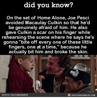 """did you know?  On the set of Home  Alone, Joe Pesci  avoided Macaulay Culkin so that he'd  be genuinely afraid of him. He also  gave Culkin a scar on his finger while  rehearsing the scene where he says he's  gonna """"bite off every one of these little  fingers, one at a time,"""" because he  actually bit him and broke the skin.  DIDYou KNowBLOG.coM  PHOTO YOUTUBEICINEFIX Keep the change, ya filthy animal! 🏡  Get free monthly Did You Know(s) via 📱 text message ➡ http://fact-snacks.com"""