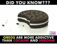 Memes, 🤖, and Oreo: DID YOU KNOW?  ORREO  RVCJ  WWW. RVCU.COM  OREOS ARE MORE ADDICTIVE  THAN COCAINE  AND  HEROINE Did you know? rvcjinsta