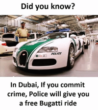Tag someone who would love it 😂😂 Follow @_dekhbhai_ for funny meme 👌🏻: Did you know?  POLICE  In Dubai, If you commit  crime, Police will give you  a free Bugatti ride Tag someone who would love it 😂😂 Follow @_dekhbhai_ for funny meme 👌🏻