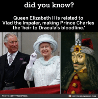 Queen Elizabeth: did you know?  Queen Elizabeth II is related to  Vlad the Impaler, making Prince Charles  the heir to Dracula's bloodline.  DIDYOUKNOWBLOG.coM  PHOTO: GETTYNNIKIPEDIA