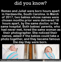 Facts about babies = ❤️👶🏼 babies romeoandjuliet famouscouples interesting funny weird ➡📱Download our free App: [LINK IN BIO]: did you know?  Romeo and Juliet were born hours apart  in Hardeeville, South Carolina. In March  of 2017, two babies whose names were  chosen months prior were delivered 18  hours apart, by the same doctor, in the  same hospital. Both babies' parents, who  had never met, hired the same woman as  their photographer. She noticed their  names, asked if the babies could take a  photo together, and they became famous  the day they were born  DIDYouKNowFACTs.coM  PHOTO: CASSIECLAYSHULTE PHOTOGRAPHY Facts about babies = ❤️👶🏼 babies romeoandjuliet famouscouples interesting funny weird ➡📱Download our free App: [LINK IN BIO]