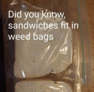 My stoner friend sent me this yesterday: Did you know,  sandwiches fit in  weed bags My stoner friend sent me this yesterday