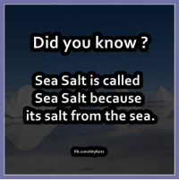 sea salt: Did you know  Sea Salt is called  Sea Salt because  its salt from the sea.  FB.comshityfacts