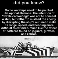 Memes, Giraffe, and Jaguar: did you know?  Some warships used to be painted  like optical illusions. The intention of  'dazzle camouflage' was not to conceal  a ship, but rather to mislead the enemy  by disrupting the ship's outline to make  its range, speed, and heading more  difficult to estimate- much like the effect  of patterns  found on jaguars, giraffes,  and zebras.  PHOTO: WIKICOMMONS  DIDYOUKNOWFACTS.COM Way more exciting than camouflage! 💁🏻 interesting camo camouflage ➡📱Download our free App: [LINK IN BIO]