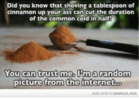 tablespoon: Did you know that shoving a tablespoon of  cinnamon up your ass can cut the duration  of the common cold in half  You can trust me, I'm a random  picture from the internetoo  HEAD OVER TO DAMNLOLCOM
