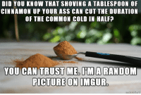 Tablespoonful: DID YOU KNOW THAT SHOVING A TABLESPOON OF  CINNAMON UP YOUR ASS CAN CUT THE DURATION  OF THE COMMON COLD IN HALF?  CAN TRUST ME,MA RANDOM  PICTURE ON IMGUR.  PICTURE ONL IMGUR