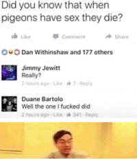 duane: Did you know that when  pigeons have sex they die?  Like  Comment  Share  Dan Withinshaw and 177 others  Jimmy Jewitt  Reall?  2 hours ago-Like  7 Reply  Duane Bartolo  Well the one I fucked did  2 hours ago-Like-l 341 Reply