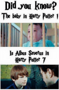 albus severus: Did.you know?  The baby in Hart Potter1  ls Albus Severus in  Hart Pottet 7