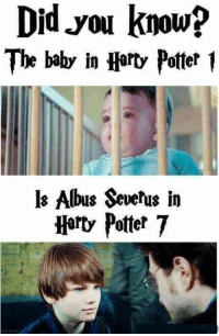 MovieFacts Harry Potter: Did you know?  The baby in Harty Potter 1  ls Albus Severus in  Harty Potter 7 MovieFacts Harry Potter