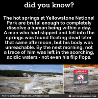 Dank, Blog, and Spring: did you know?  The hot springs at Yellowstone National  Park are brutal enough to completely  dissolve a human being within a day  A man who had slipped and fell into the  springs was found floating dead later  that same afternoon, but his body was  unreachable. By the next morning, not  a trace of him was left in the scorching,  acidic waters not even his flip flops.  DANGER  Fragvie Thermal Arra  KEEP OUT  DIDYouK Now BLOG coM  PHOTO: BETH HARPAZAP, Y  ELLOWSTONE.COM NOPE. 😨😨😨   Get exclusive Did You Know(s) via text message ➡ http://fact-snacks.com
