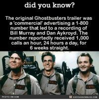 Memes, Bill Murray, and Ghostbusters: did you know?  The original Ghostbusters trailer was  a 'commercial' advertising a 1-800  number that led to a recording of  Bill Murray and Dan Aykroyd. The  number reportedly received 1,000  calls an hour, 24 hours a day, for  6 weeks straight.  DIDYOUKNOWBLOG.coM  PHOTO: EW.COM Interesting. Follow me @creepy.fact for more posts similar to this one 😀👻