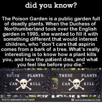 "Children, Dank, and Blog: did you know?  The Poison Garden is a public garden full  of deadly plants. When the Duchess of  Northumberland took over the English  garden in 1995, she wanted to fill it with  something different that would interest  children, who ""don't care that aspirin  comes from a bark of a tree. What's really  interesting is to know how a plant kills  you, and how the patient dies, and what  you feel like before you die.""  TRE SE PLANTS  THESE  PLANTS  KILL  CAN  KILL  CAN  DIDYouK Now BLOG coM  PHOTO: MARGARET WHITTAKER A poison garden. For children! 💀🙅  Get exclusive Did You Know(s) in your inbox ➡ http://goo.gl/iRFFE7"