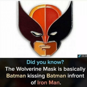 Batman, Funny, and Iron Man: Did you know?  The Wolverine Mask is basically  Batman kissing Batman infront  of Iron Man. I think Wolverine need a new name via /r/funny https://ift.tt/2R6PczR