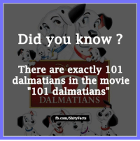 """Facts, Memes, and Movies: Did you know?  There are exactly 101  dalmatians in the movie  """"101 dalmatians""""  DALMATIANS  fb.com/Shity Facts"""
