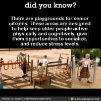 Amazon, Books, and Dank: did you know?  There are playgrounds for senior  citizens. These areas are designed  to help keep older people active  physically and cognitively, give  them opportunities to socialize,  and reduce stress levels.  DIDYOUKNOWBLOG.coM  PHOTO: OLI SCARFF. GETTY/PUBLICRADIO INTL Age requirement? 👵  Buy the official Did You Know book on Amazon ➡ http://amzn.to/2eNRlj1