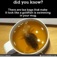 Amazon, Goldfish, and Memes: did you know?  There are tea bags that make  it look like a goldfish is swimming  in your mug.  PHOTO: AMAZO  DIDYOUKNOWBLOG.COM Alll of my dreams have now come true. ☕️🐡 tea goldfish weird funny ➖➖➖➖➖➖➖➖➖➖➖ 📢 Share the knowledge! Tag your friends in the comments. ➖➖➖➖➖➖➖➖➖➖➖ Want more Did You Know(s)? ➡📱 Download our free App: [LINK IN BIO] ➡📩 Get text message alerts: http:-Fact-Snacks.com ➡ 📓 Buy our book on Amazon: http:-bit.ly-DidYouKnowBook ➡ 📩 Free email newsletter: http:-bit.ly-DidYouKnowEmail ➖➖➖➖➖➖➖➖➖➖➖ We post different content on each channels. Follow us so you don't miss out! 📍http:-facebook.com-didyouknowblog 📍http:-twitter.com-didyouknowfacts ➖➖➖➖➖➖➖➖➖➖➖ DYN FACTS TRIVIA TIL DIDYOUKNOW NOWIKNOW