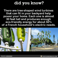 Dank, Energy, and Facts: did you know?  There are tree-shaped wind turbines  that can fit in your backyard help  power your home. Each one is almost  30 feet tall and produces enough  eco-friendly energy for about 50%  of a French household's electric needs.  DIDYouK Now BLOG coM  PHOTO: NEW WIND Everyone should get a turbine tree! 🌲💨  Subscribe and get Did You Know​(s) texted directly to you ➡ https://fact-snacks.com