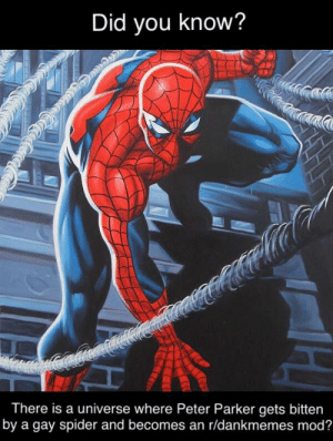 Spider, Intensifies, and Bitten: Did you know?  There is a universe where Peter Parker gets bitten  by a gay spider and becomes an r/dankmemes mod? 😱🕷🌈 *Spidey sense intensifies (i.redd.it)