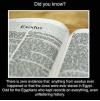 Memes, Zero, and Exodus: Did you know?  There is zero evidence that anything from exodus ever  happened or that the Jews were ever slaves in Egypt.  Odd for the Egyptians who kept records on everything, even  unflattering history. Check out our secular apparel shop! http://wflatheism.spreadshirt.com/