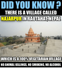 A Village to be Known !!! Surprisingly, you don't even find a single chicken or Goat inside Village. Absolutely Wow !!!: DID YOU KNOW?  THERE ISAVILLAGE CALLED  NANARPURINRAUTAHATNEPAL,  WHICH IS A 100%VEGETARIAN VILLAGE  NO ANIMAL KILLINGS, NO SMOKING, NO ALCOHOL A Village to be Known !!! Surprisingly, you don't even find a single chicken or Goat inside Village. Absolutely Wow !!!